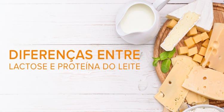 Diferença entre lactose e proteína do leite - Sem Glúten Sem Latcose
