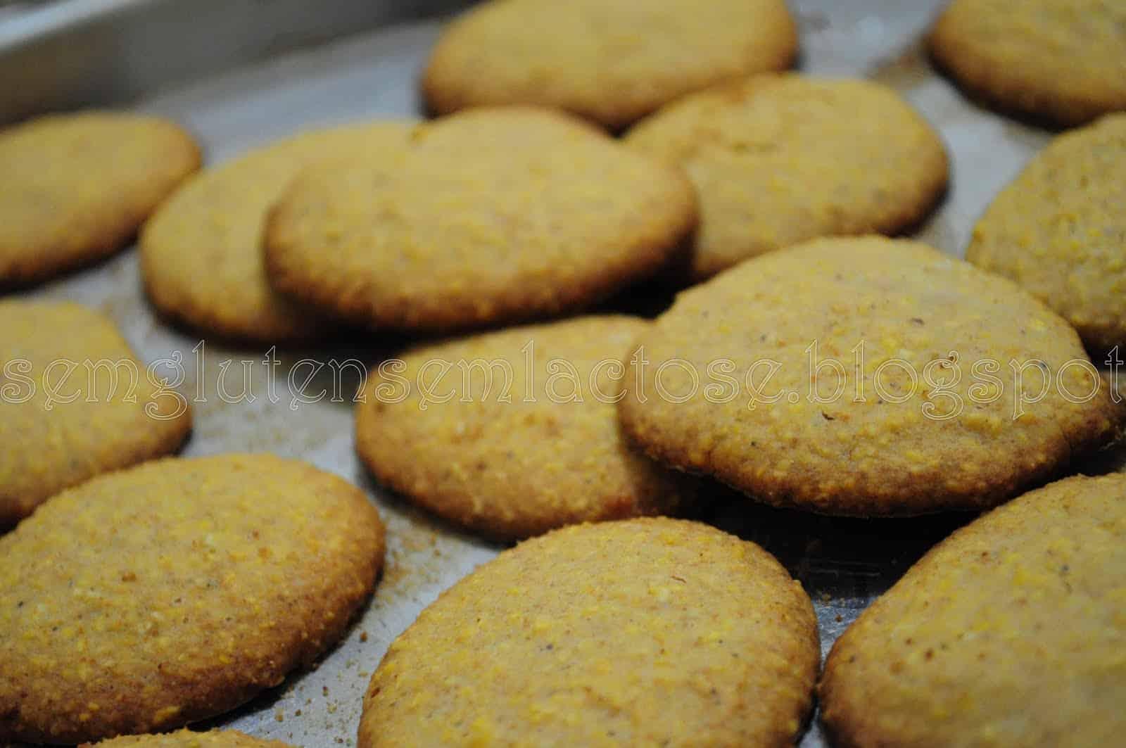 biscoito com leite de coco sem glúten sem lactose